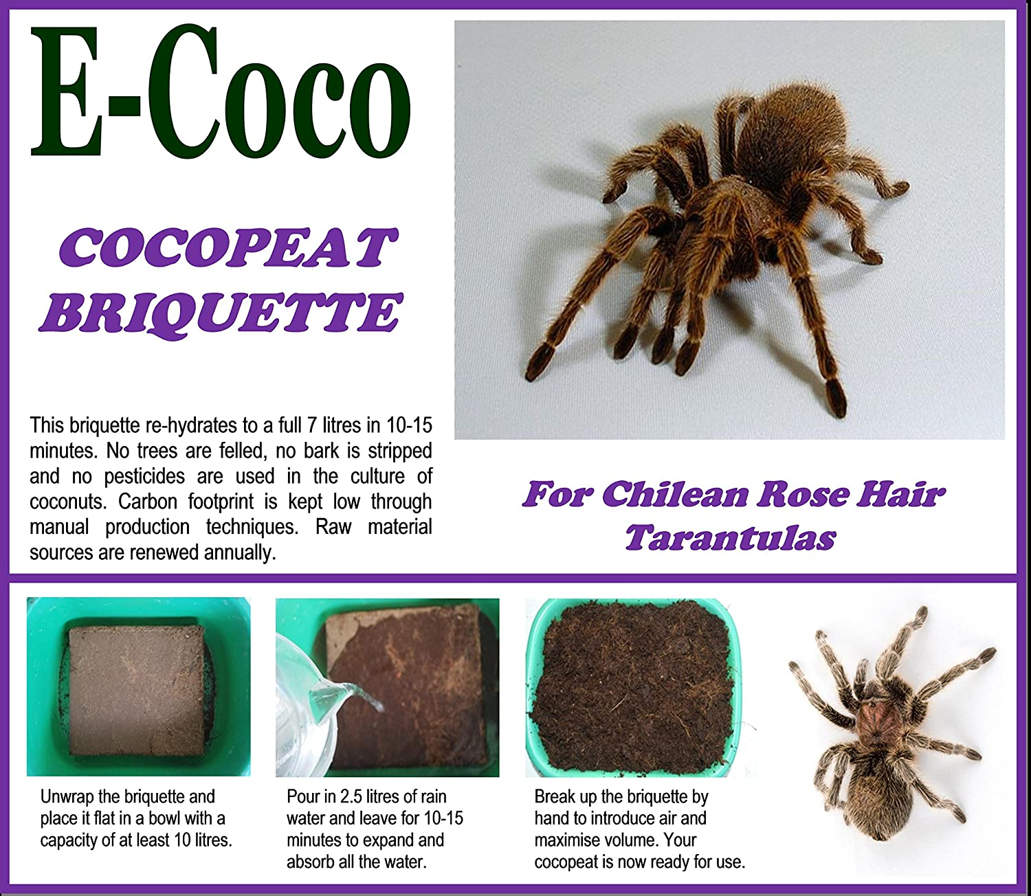 Chilean Rose Hair Tarantula Substrate, Bedding, Soil for Tarantulas - Compressed Briquette (7 litres) E-Coco Products UK