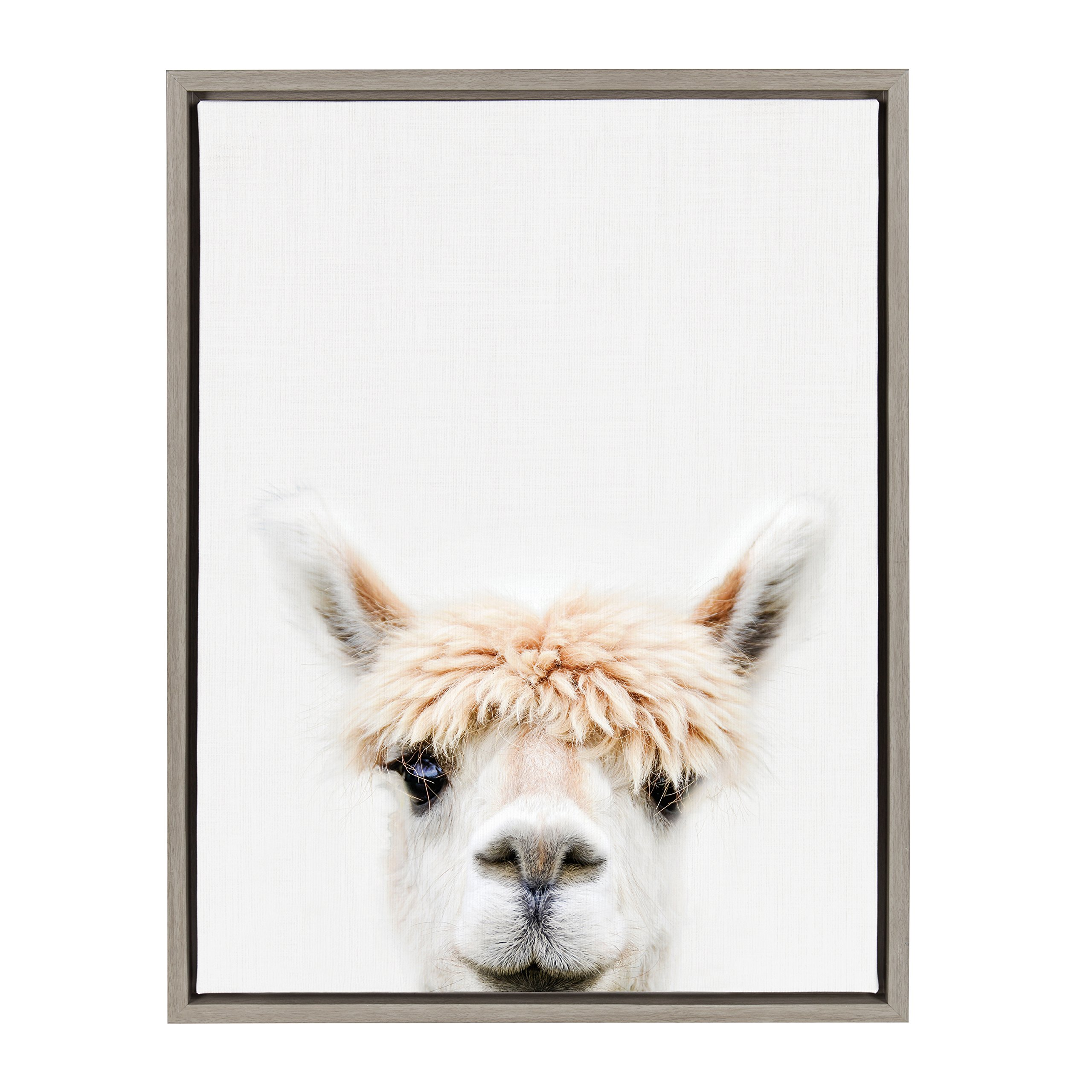 Kate and Laurel - Sylvie Alpaca Bangs Animal Print Portrait Framed Canvas Wall Art by Amy Peterson, Gray 18 x 24