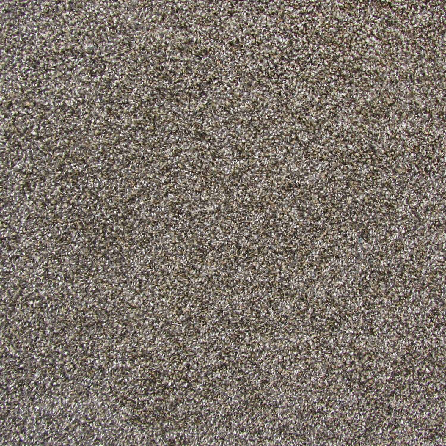 All American Carpet Tiles Wellington 23.5 x 23.5 Plush Easy to Install Do It Yourself Peel and Stick Carpet Tile Squares - 9 Tiles Per Carton - 34.52 Square Feet Per Carton (Mink) by All American Carpet Tiles LLC