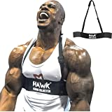 Hawk Sports Arm Blaster for Biceps & Triceps Dumbbells & Barbells Curls Muscle Builder Bicep Isolator for Big Arms…