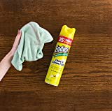 Endust Multi-Surface Dusting and Cleaning