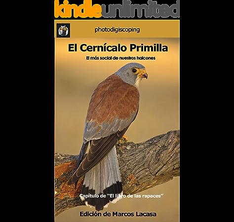 El Cernícalo Primilla.: El más social de nuestros halcones. (El libro de las rapaces nº 4) eBook: Lacasa, Marcos, Lacasa, Marcos, Ventas, Adolfo, Valiña, Jose Luis: Amazon.es: Tienda Kindle