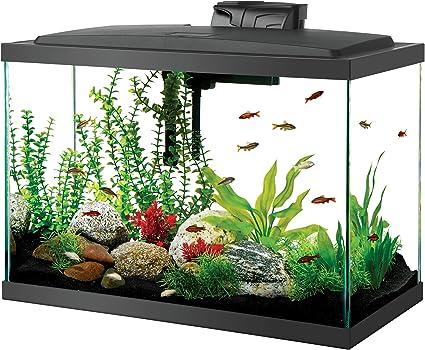 Aqueon Led 20-Gallon Fish Tank Kit