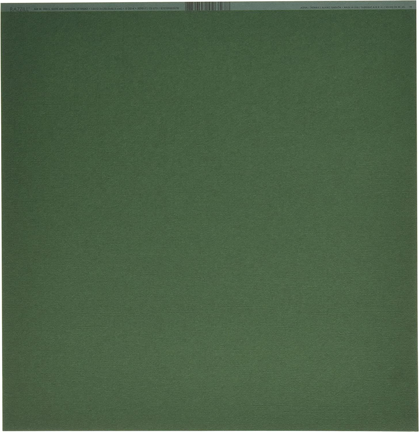 """Bazzill Mono Cardstock 12/""""X12/""""-Ivy//Canvas 25 Pack"""