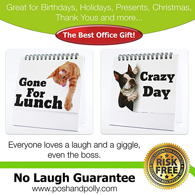 Amazoncom Funny Office Gifts Best Office Gift For Coworkers