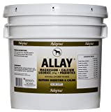 Adeptus Nutrition Allay EQ Joint Supplements, 20