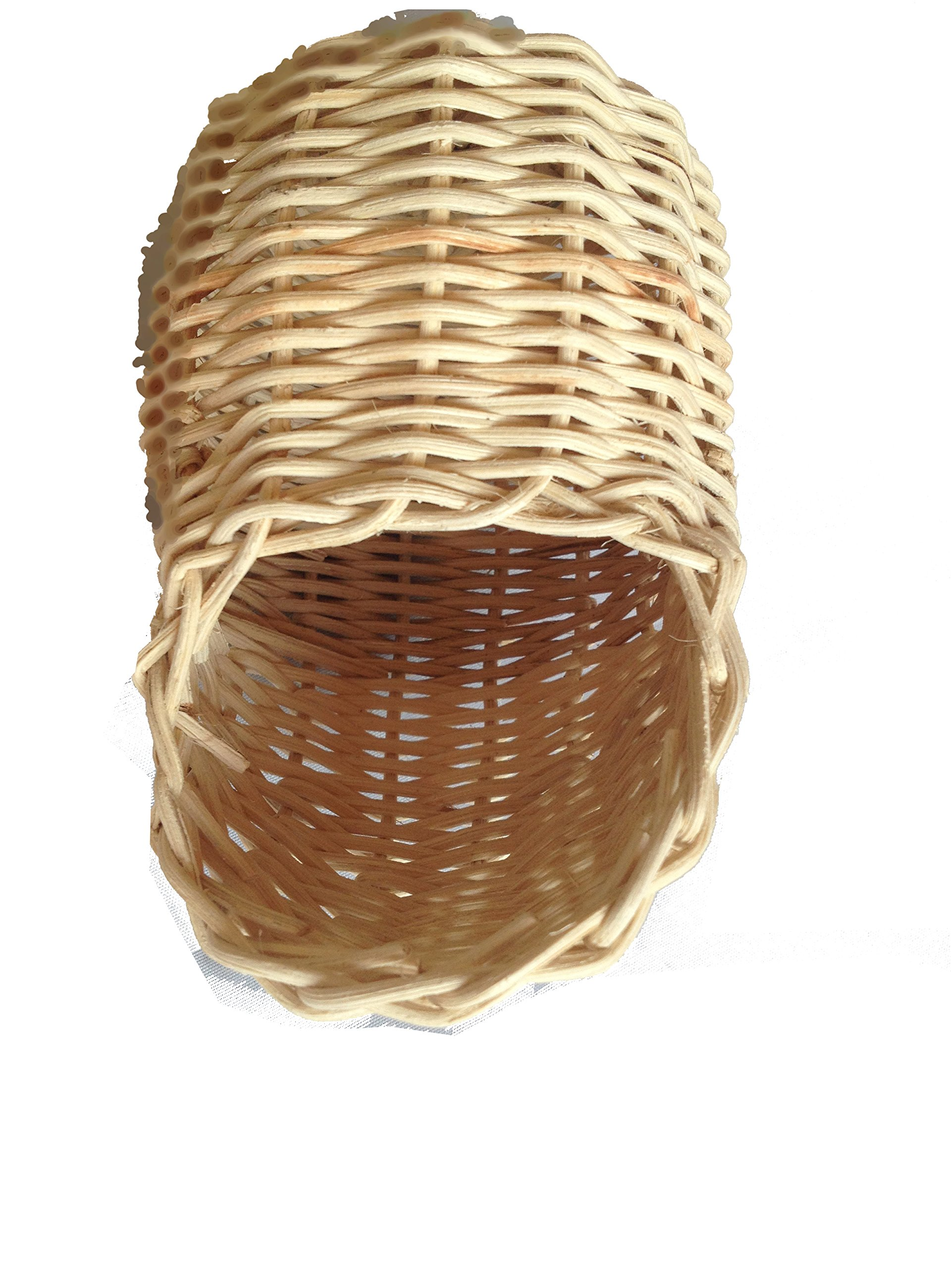 Handmade Rattan Nature's Nest Finch Birds 3x5 Inch by Power of Dream (Image #3)