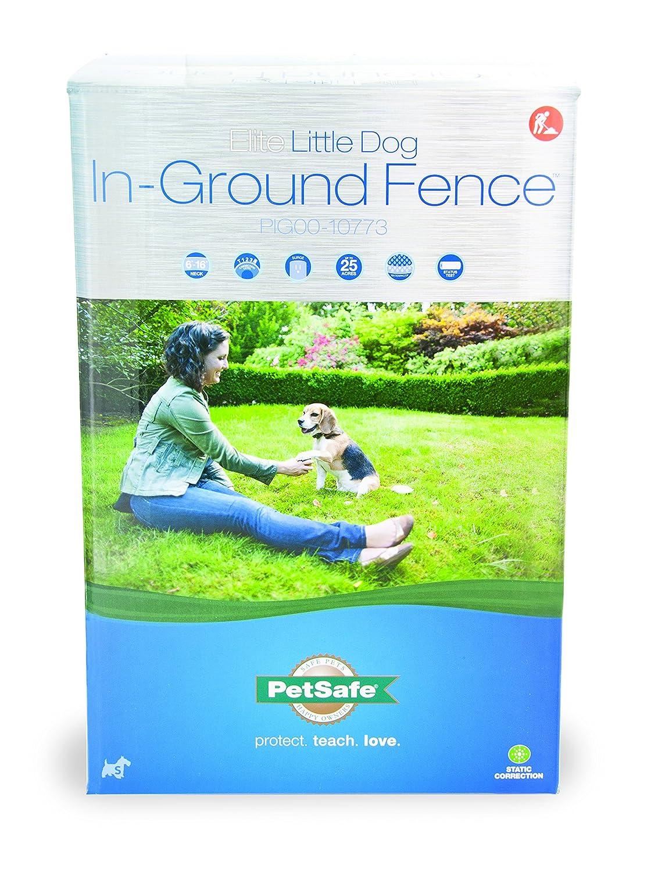 amazon com elite little dog in ground fence wireless pet fence