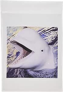 3dRose fl_9951_1 Beluga Whale Delphinapterus Leucas Garden Flag, 12 by 18-Inch