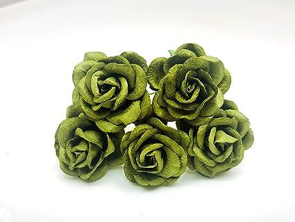 Amazon jn siam789 cool green 10 pcs 35 mm rose mulberry roses jn siam789 cool green 10 pcs 35 mm rose mulberry roses paper flowers mightylinksfo