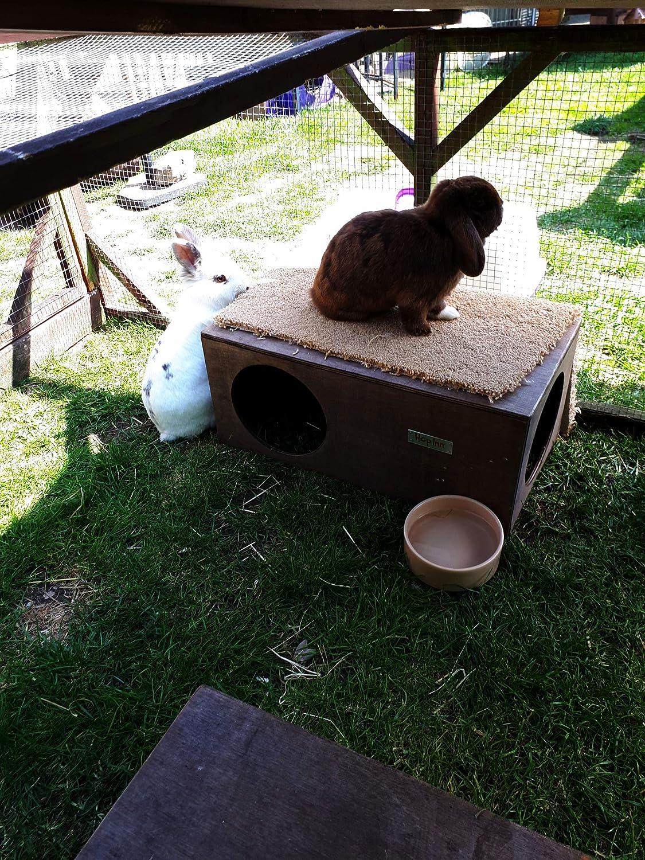 ideale per interni o esterni Hop Inn design di propriet/à pronto all/'uso Casetta per conigli costruito per durare rifugio//nascondiglio adatto anche per gatti grande