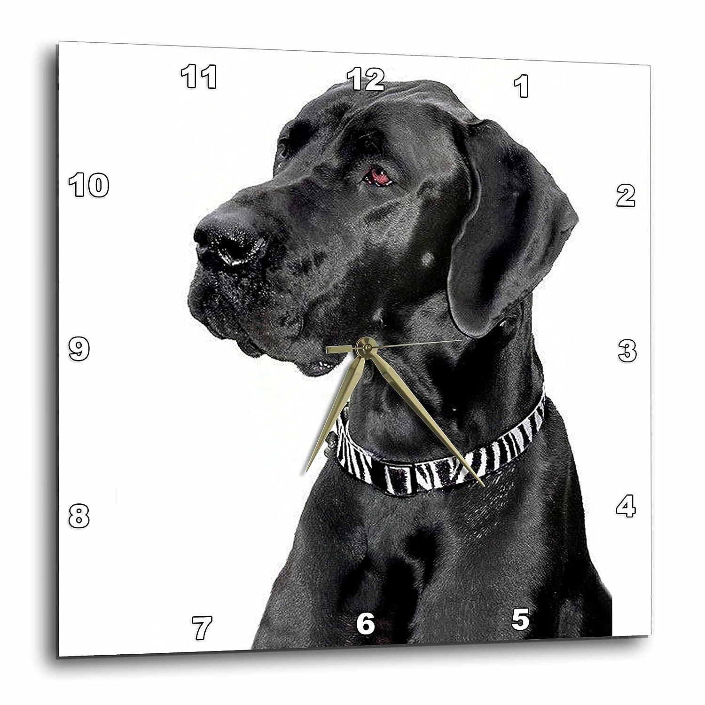 15 by 15-Inch 3dRose dpp/_1054/_3 Black Great Dane-Wall Clock