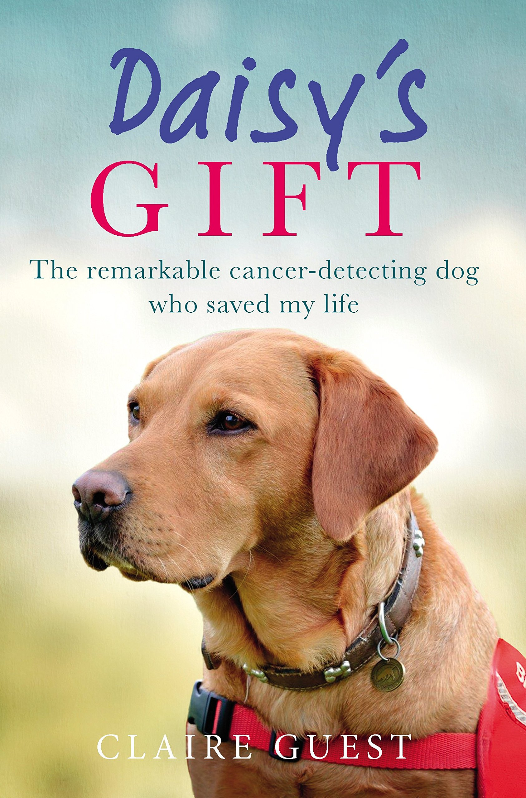 Read Online Daisy's Gift: The Remarkable Cancer-Detecting Dog Who Saved My Life pdf