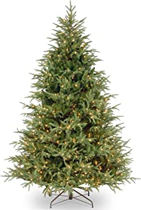"National Tree 7.5 Foot ""Feel Real"" Frasier Grande Tree with 1000 Clear Lights, Hinged (PEFG3-308-75)"