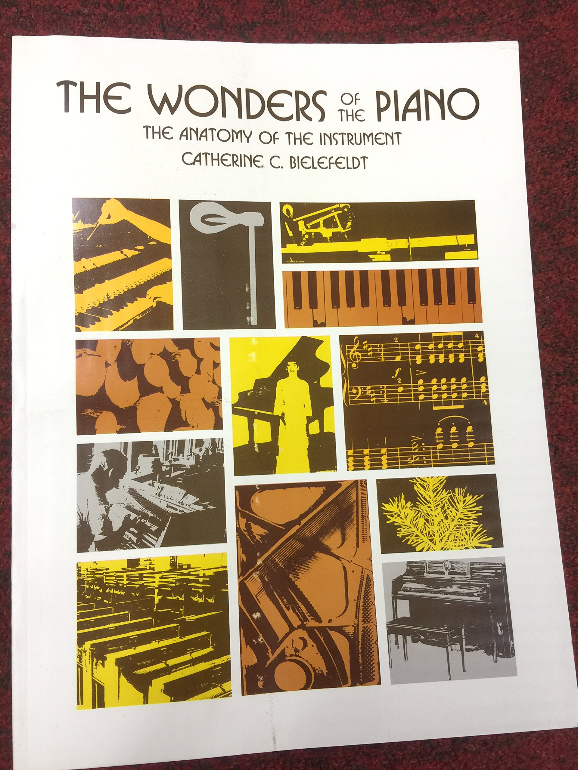 The Wonders Of The Piano The Anatomy Of The Instrument Catherine C
