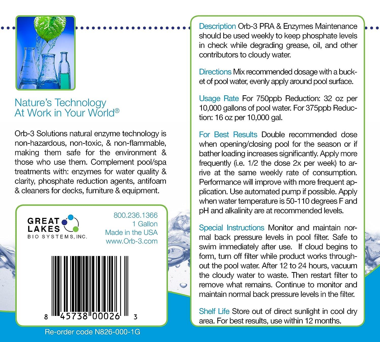 orb-3 pra y enzimas botella de mantenimiento para piscinas: Amazon ...