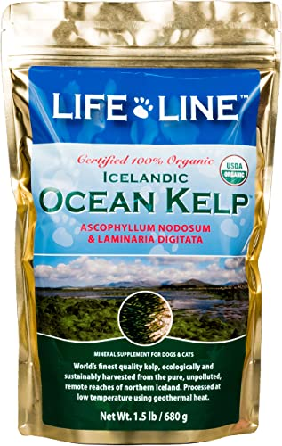 Life Line Pet Nutrition Organic Ocean Kelp Supplement for Skin Coat, Digestion in Dogs Cats