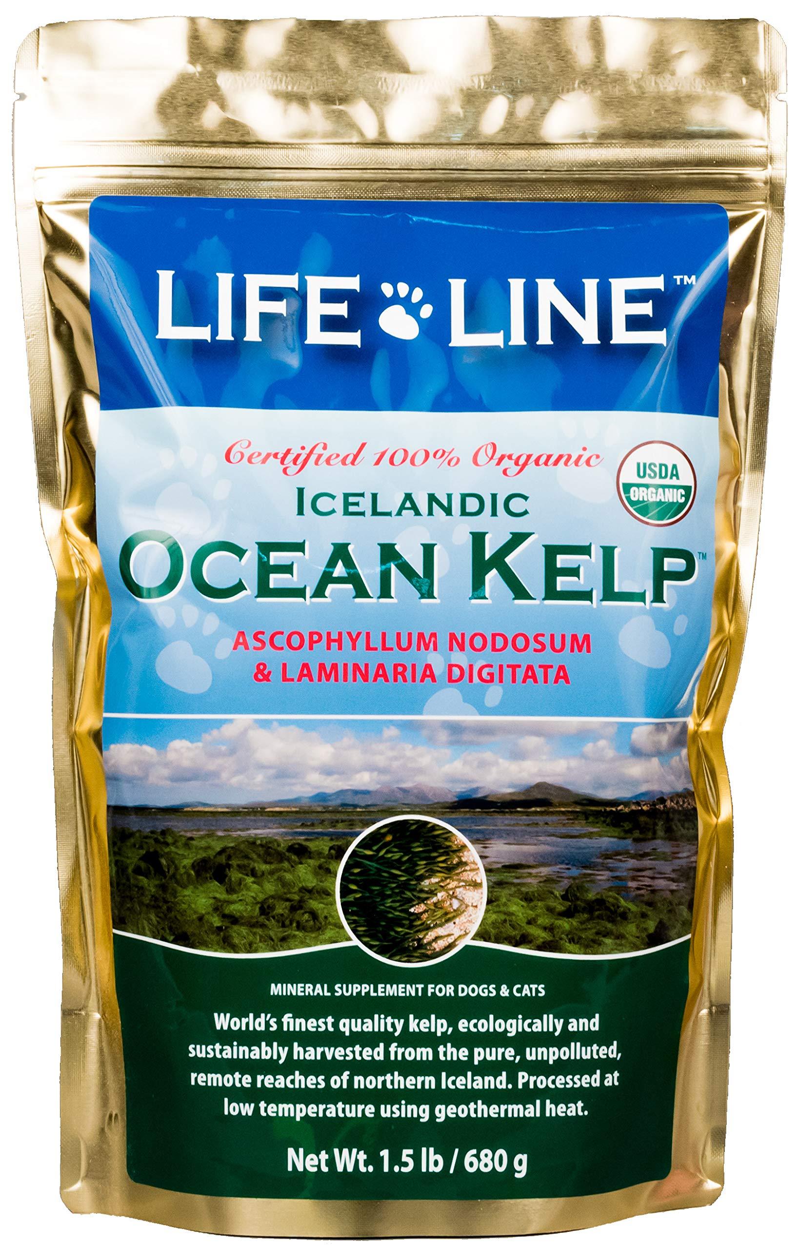 Life Line Pet Nutrition Organic Ocean Kelp Supplement for Skin & Coat, Digestion, Teeth & Gums in Dogs & Cats, 1-1/2-Pound by Life Line Pet Nutrition