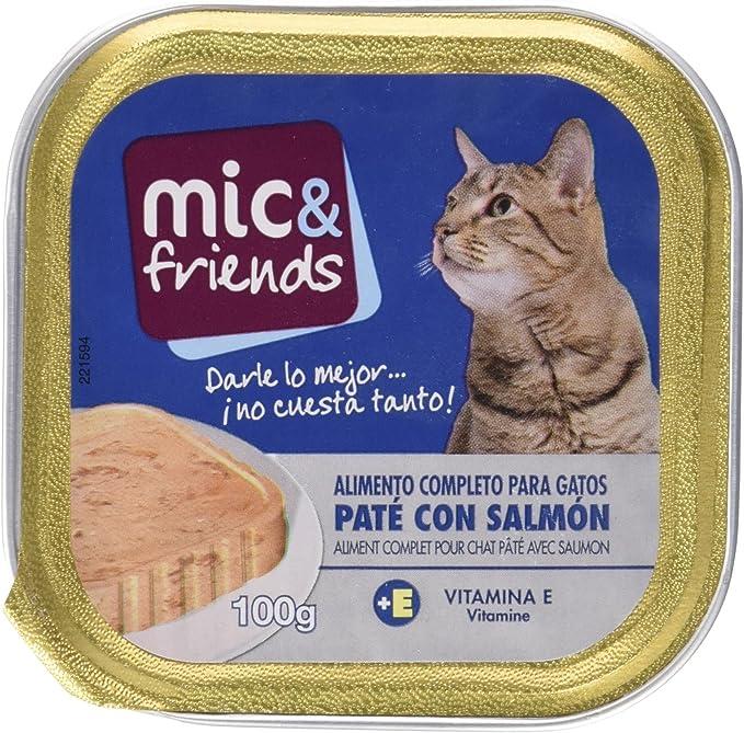 Mic&Friends Paté Con Salmón, Alimento Completo para Gatos - 100 g: Amazon.es: Alimentación y bebidas