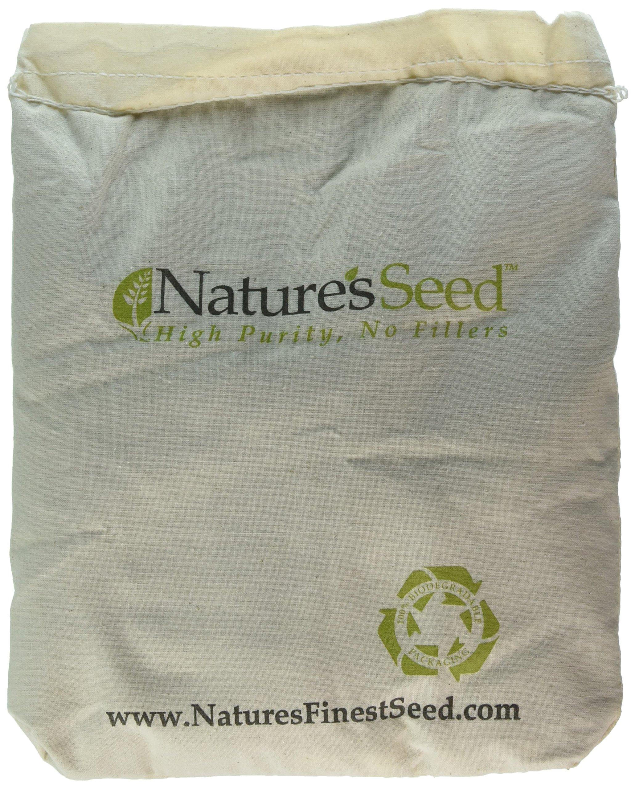 Velvet Blue Grass Seed Blend (500 sq ft)