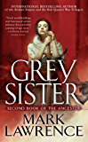 Grey Sister (Book of the Ancestor)