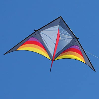 Into The Wind Dan Leigh Hot XFS Delta Kite: Toys & Games