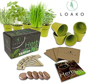 Indoor Herb Garden Kit. Includes Pots, Seeds, Soil Pellets, Markers, Instruction Booklet. Basil, Parsley, Cilantro, Chives, Thyme. DIY Kitchen Herbs Growing Kit. Beginner Friendly.