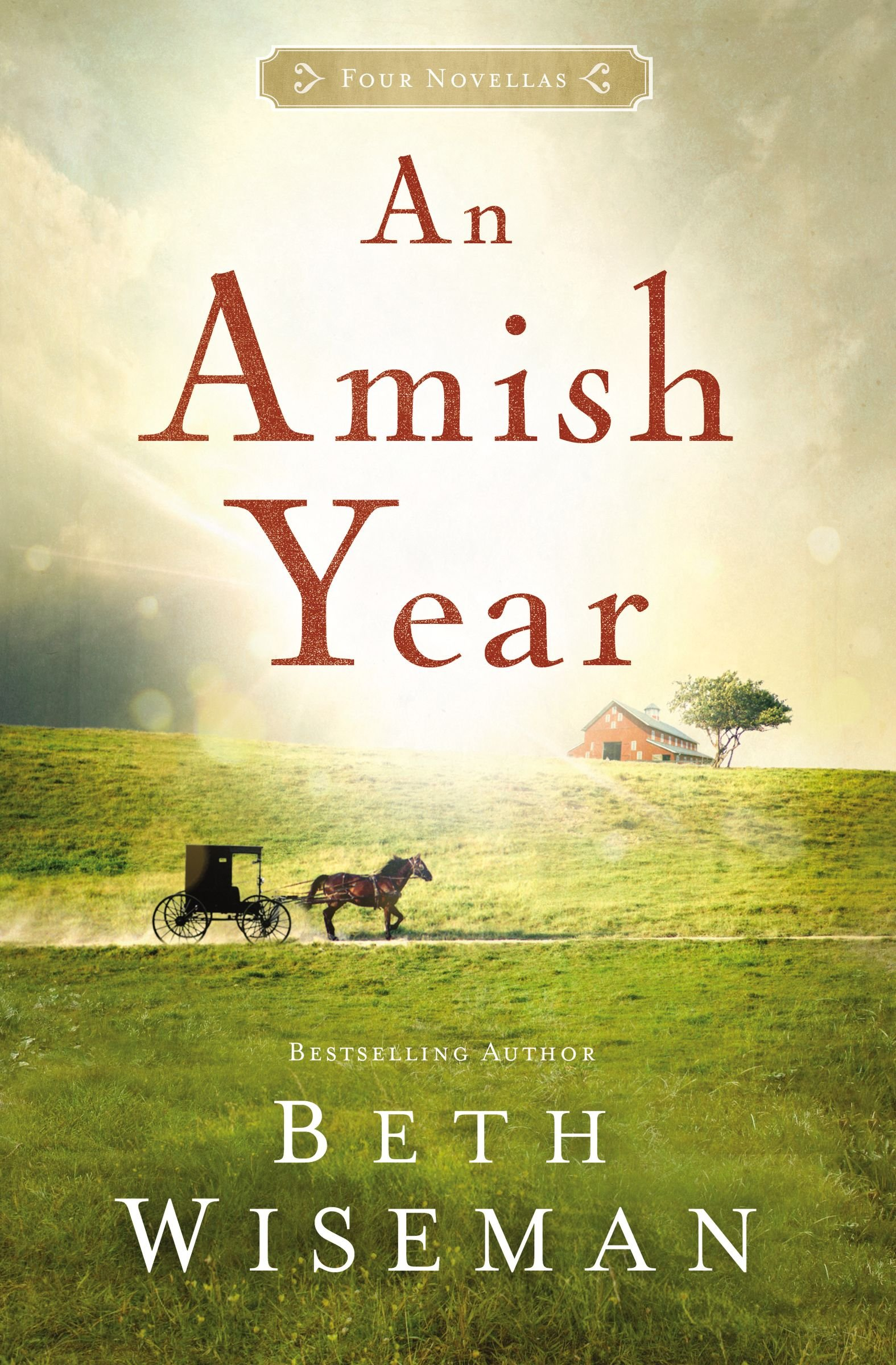 an amish year four amish novellas beth wiseman  an amish year four amish novellas beth wiseman 9781401689773 com books