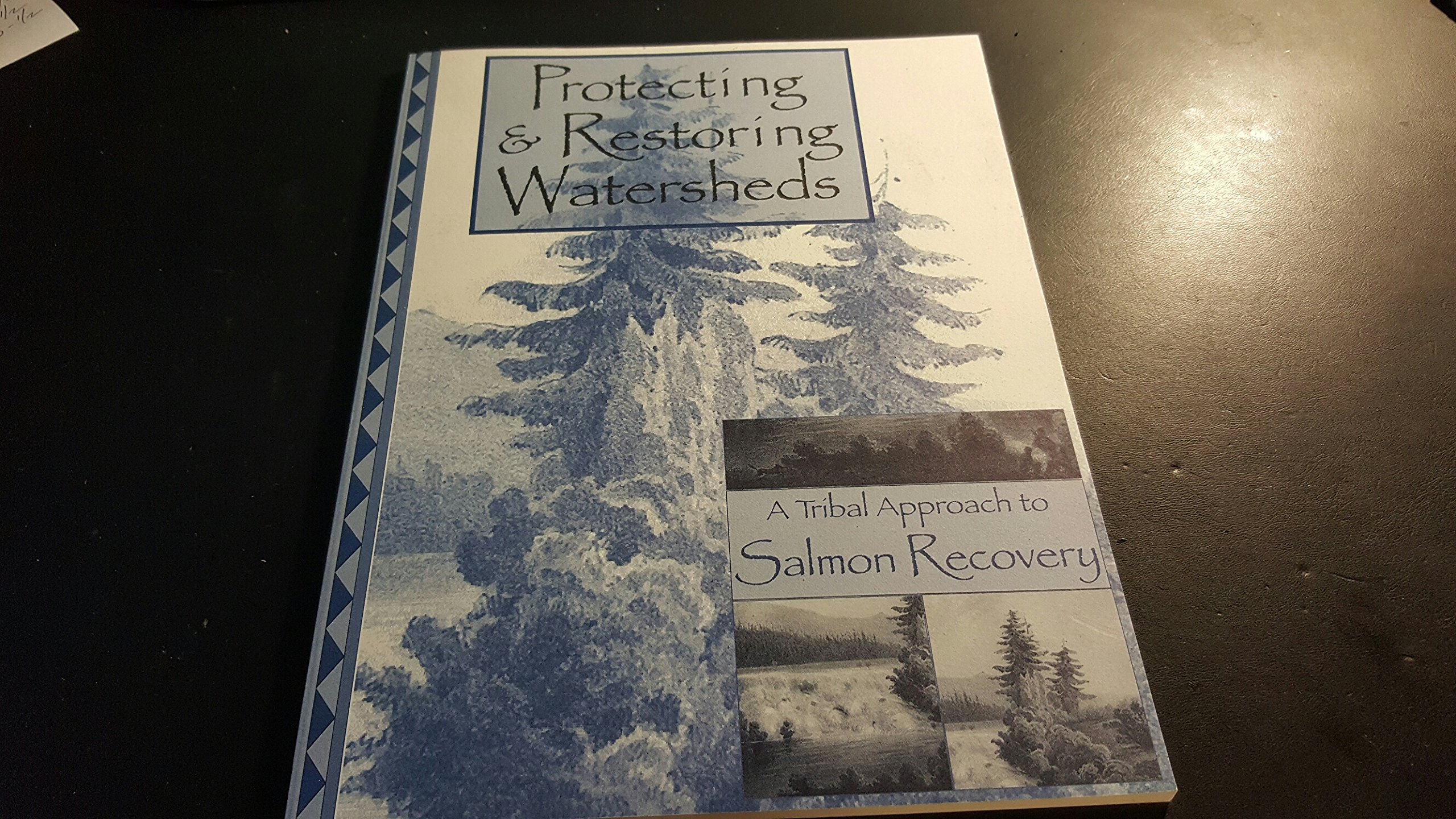 Protecting & Restoring Watersheds; A Tribal Approach to Salmon Recovery, Hollenbach Margaret, Jill Ory