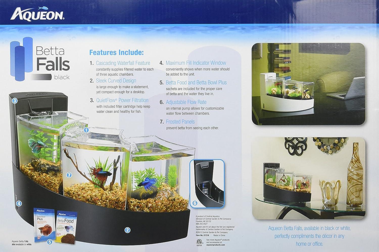 Fish aquarium price list - Fish Aquarium Price List
