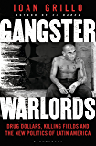 Gangster Warlords: Drug Dollars, Killing Fields, and the New Politics of Latin America (English Edition)