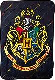 "Harry Potter House Pinstripes Micro Raschel Throw Blanket, 46"" x 60"""