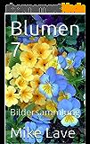 Blumen 7: Bildersammlung (German Edition)