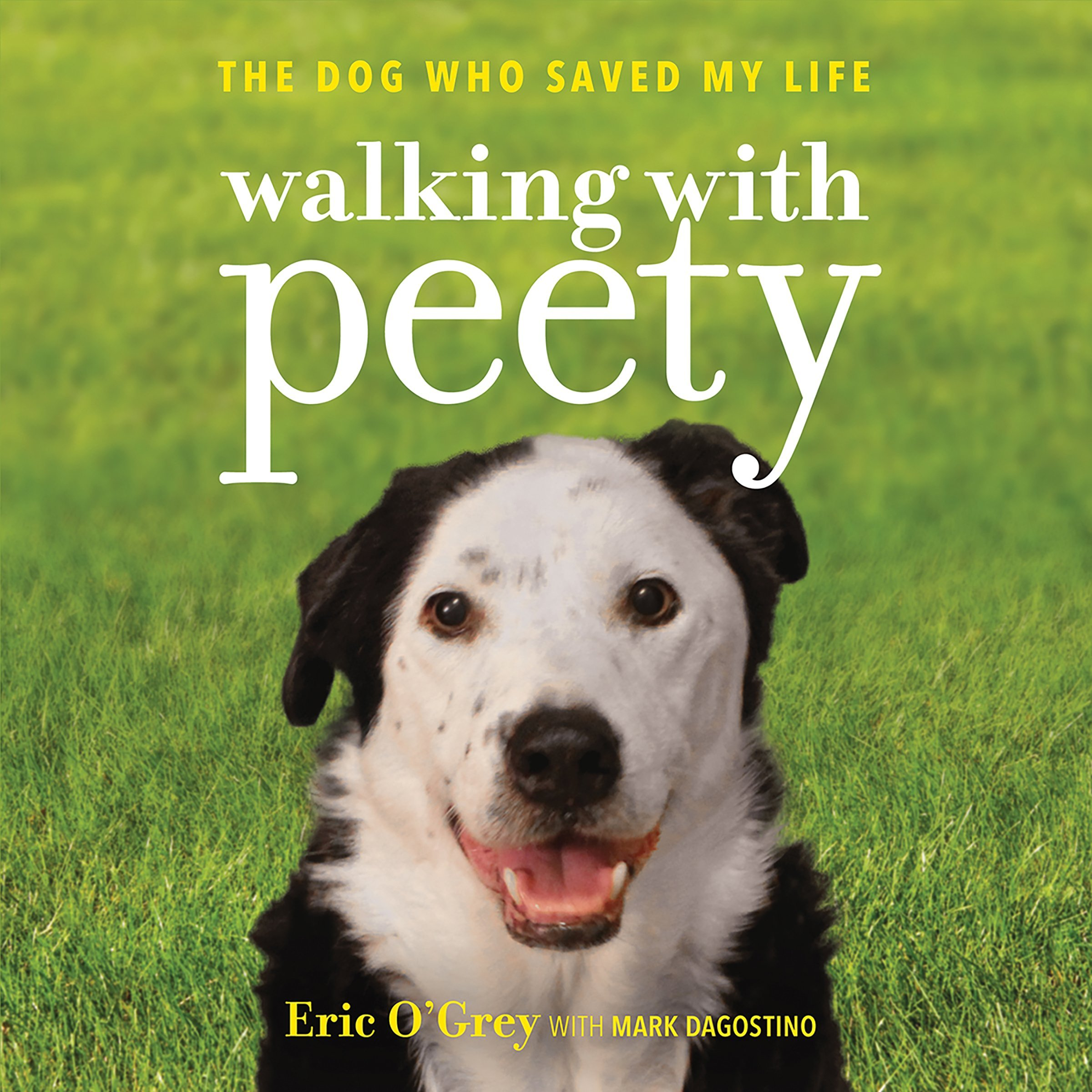 Walking with Peety: The Dog Who Saved My Life by Hachette Audio (Image #1)