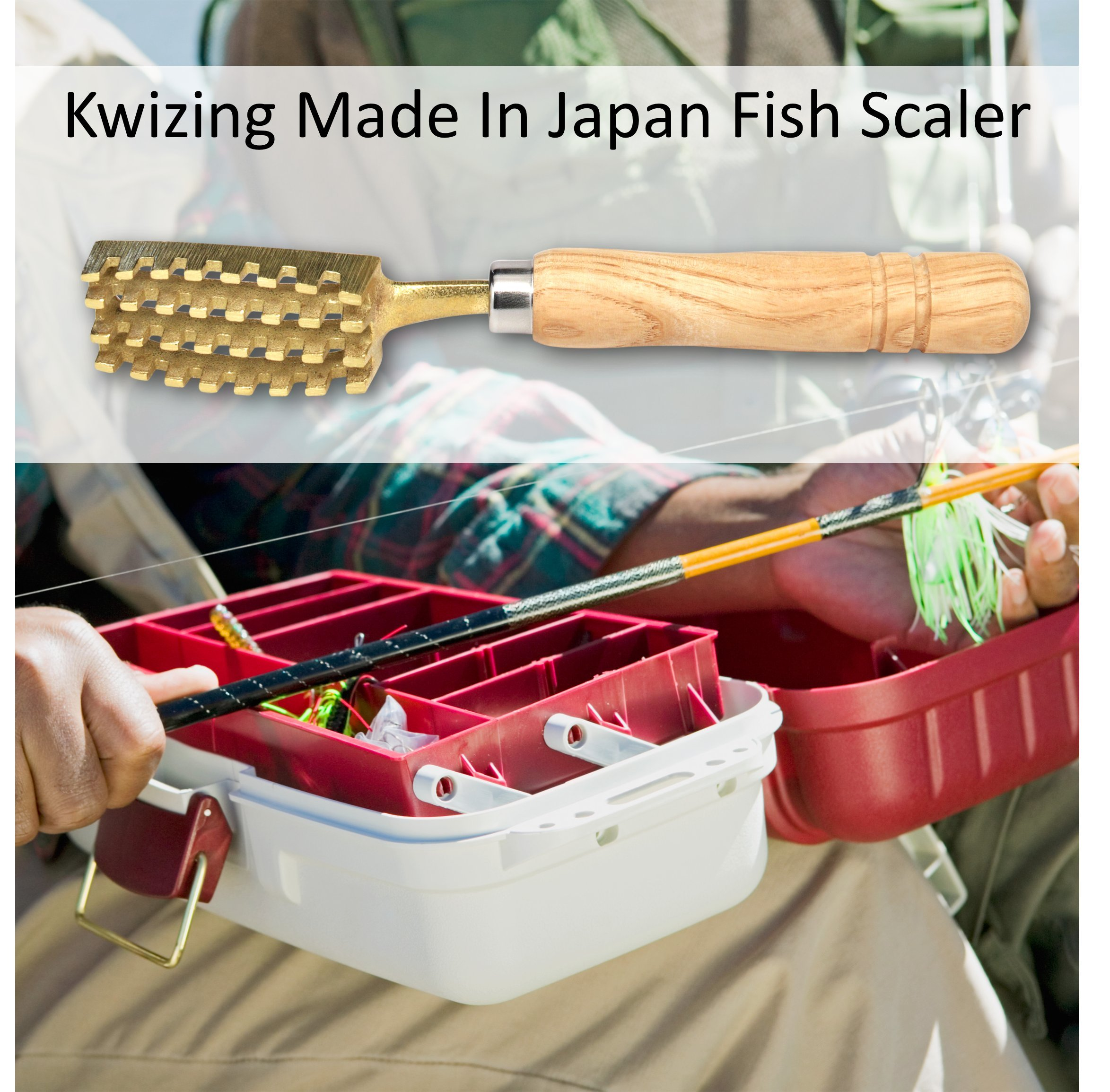 Kwizing Made in Japan Fish Scaler Brush with Brass Serrated Sawtooth and Ergonomic Wooden Handle - Easily Remove Fish Scales Without Fuss Or Mess - Handcrafted by Japanese Artisans by Kwizing (Image #6)