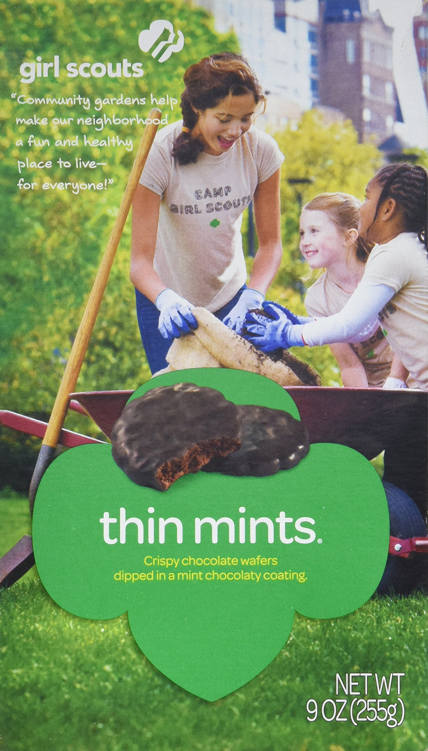 Girl Scout Thin Mints Cookies (32 per box)