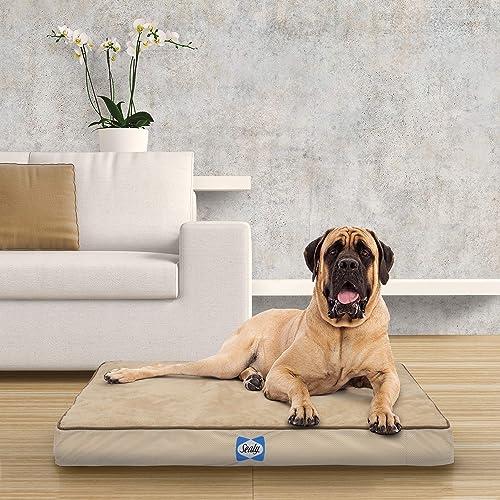 Sealy Ultra Plush Dog Bed – Orthopedic Foam pet Bed