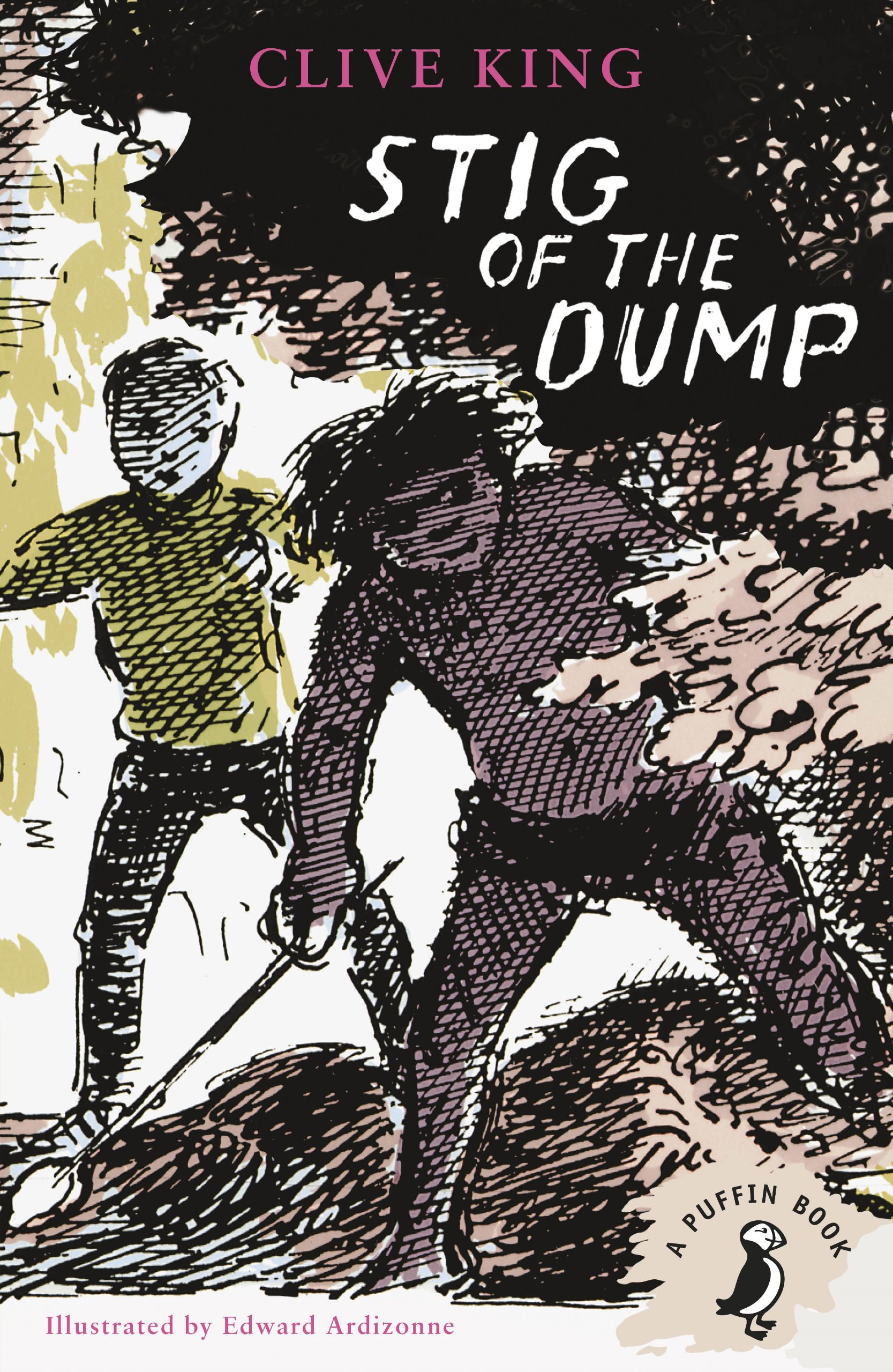 Stig of the Dump (A Puffin Book) : King, Clive, Ardizzone, Edward:  Amazon.co.uk: Books
