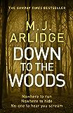 Down to the Woods: DI Helen Grace 8 (Detective Inspector Helen Grace)