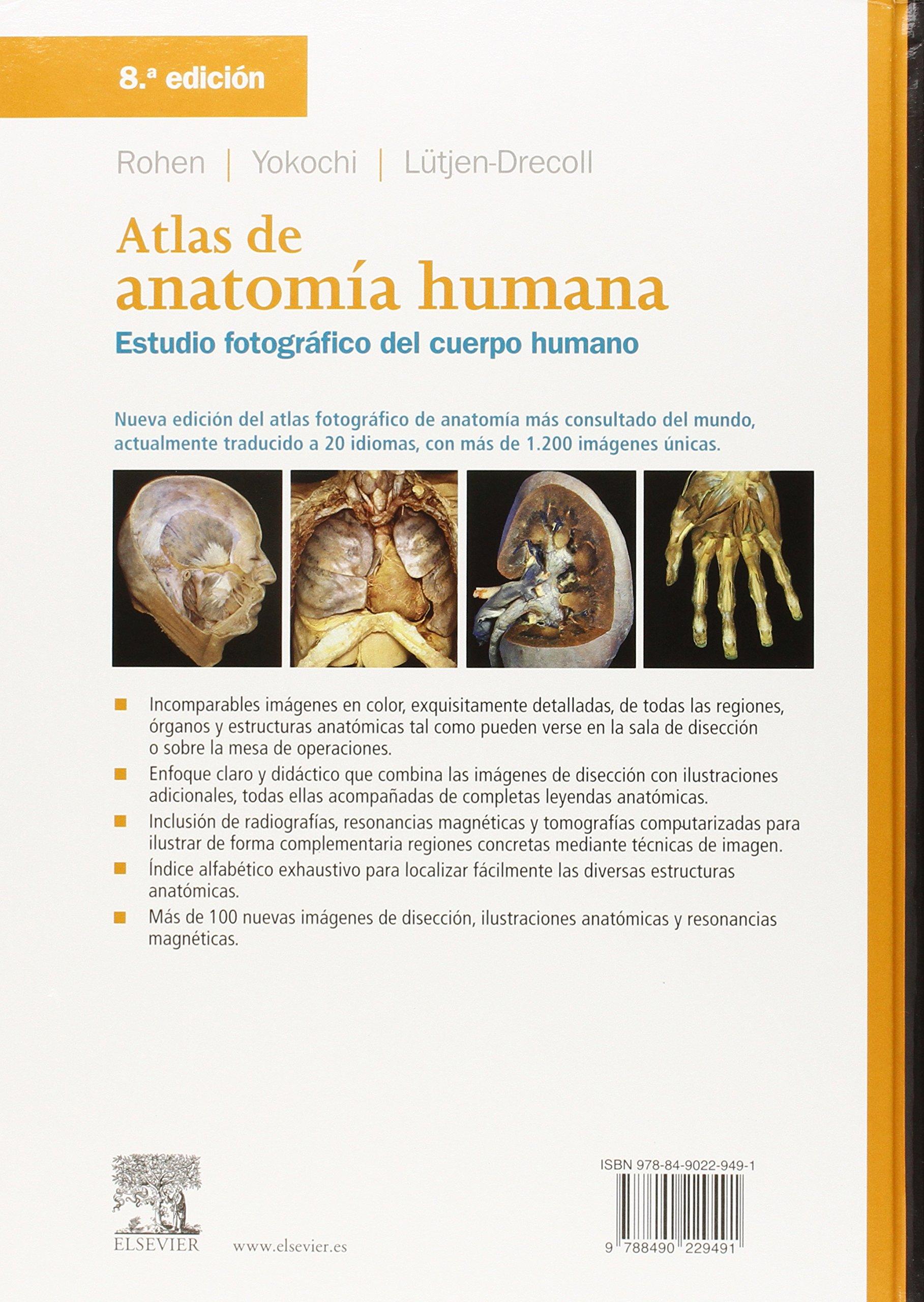 Atlas De Anatomía Humana - 8ª Edición: Amazon.es: Johannes W. Rohen ...