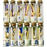 Aokbean 12pcs Coastal Wedding Party Favors Clear Glass Wishing Bottles with Cork Stoppers,Seashell and Inside Steam Punk Pendants for Home Decor Birthday Gifts