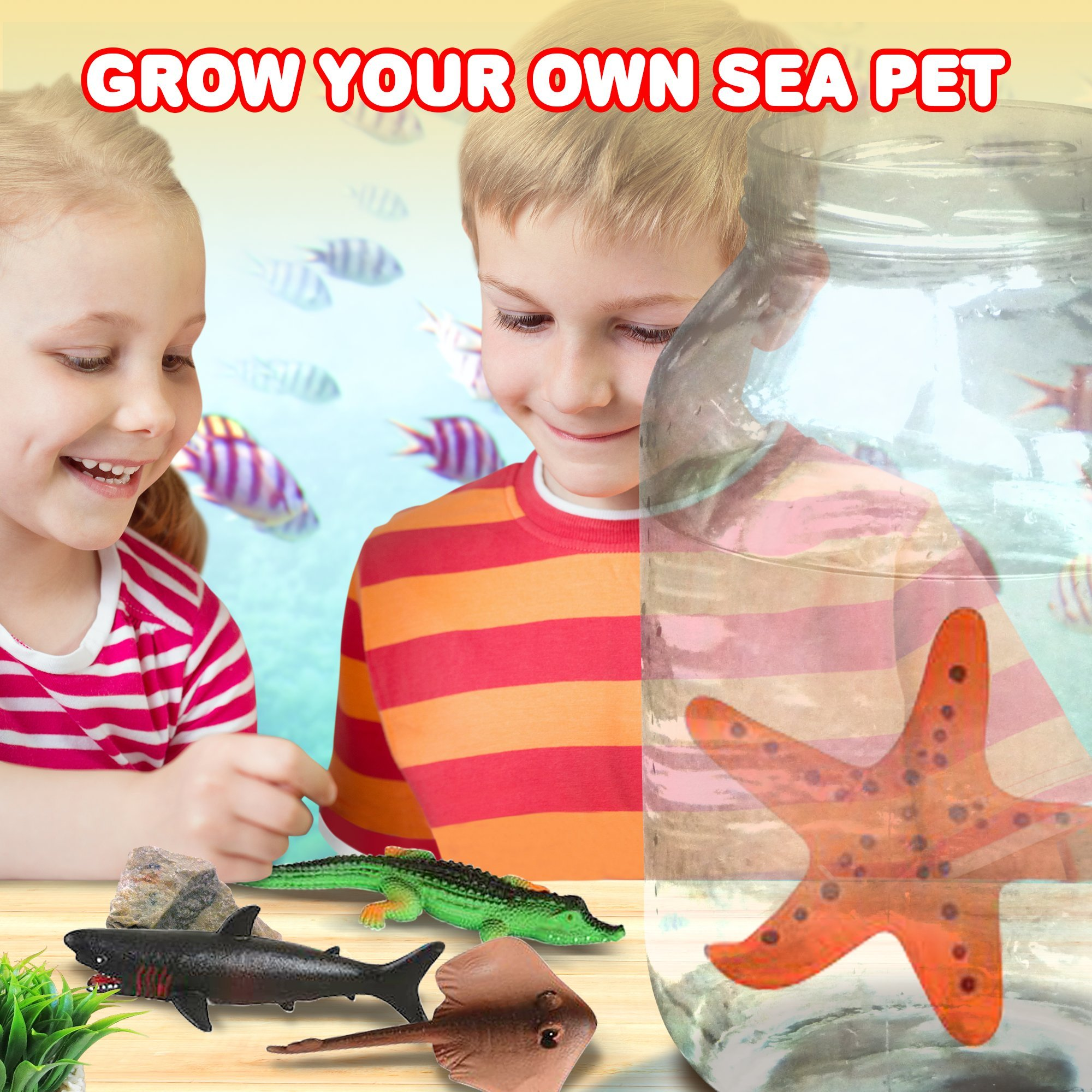 ArtCreativity Growing Sea Animals 6 Different Water Expanding Sea Creatures  Grows 6X Larger   Amazing Sensory Jelly-Like Toy   Fun & Educational Gift for Boys & Girls. by ArtCreativity (Image #7)