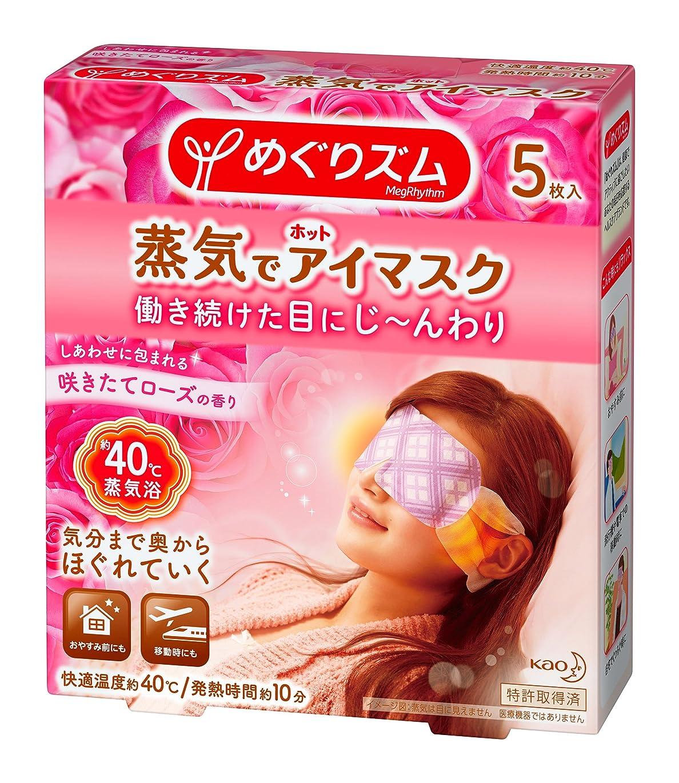 入り口葡萄冷笑するAroma Season 蒸気でホットアイマスク USB電熱式 安眠 ドライアイ 眼瞼炎 疲れ目を緩和 リラックス 誕生日プレゼント ギフト包装(ウサギ)