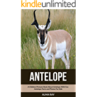 Antelope: A Children Pictures Book About Antelope With Fun Antelope Facts and Photos For Kids