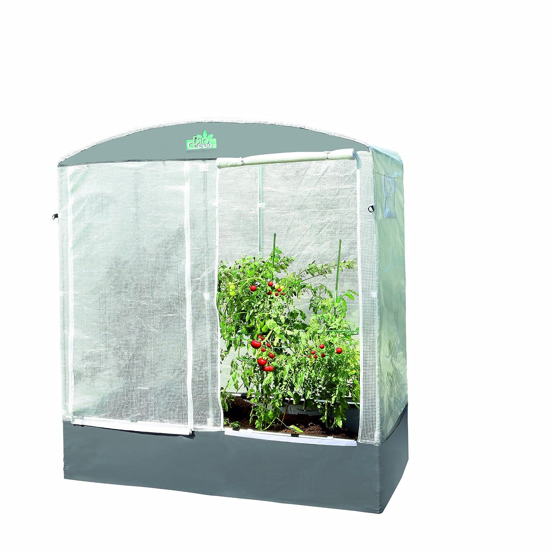 BioGreen Tomatenhaus & Überwinterungshaus 220x200x100 cm