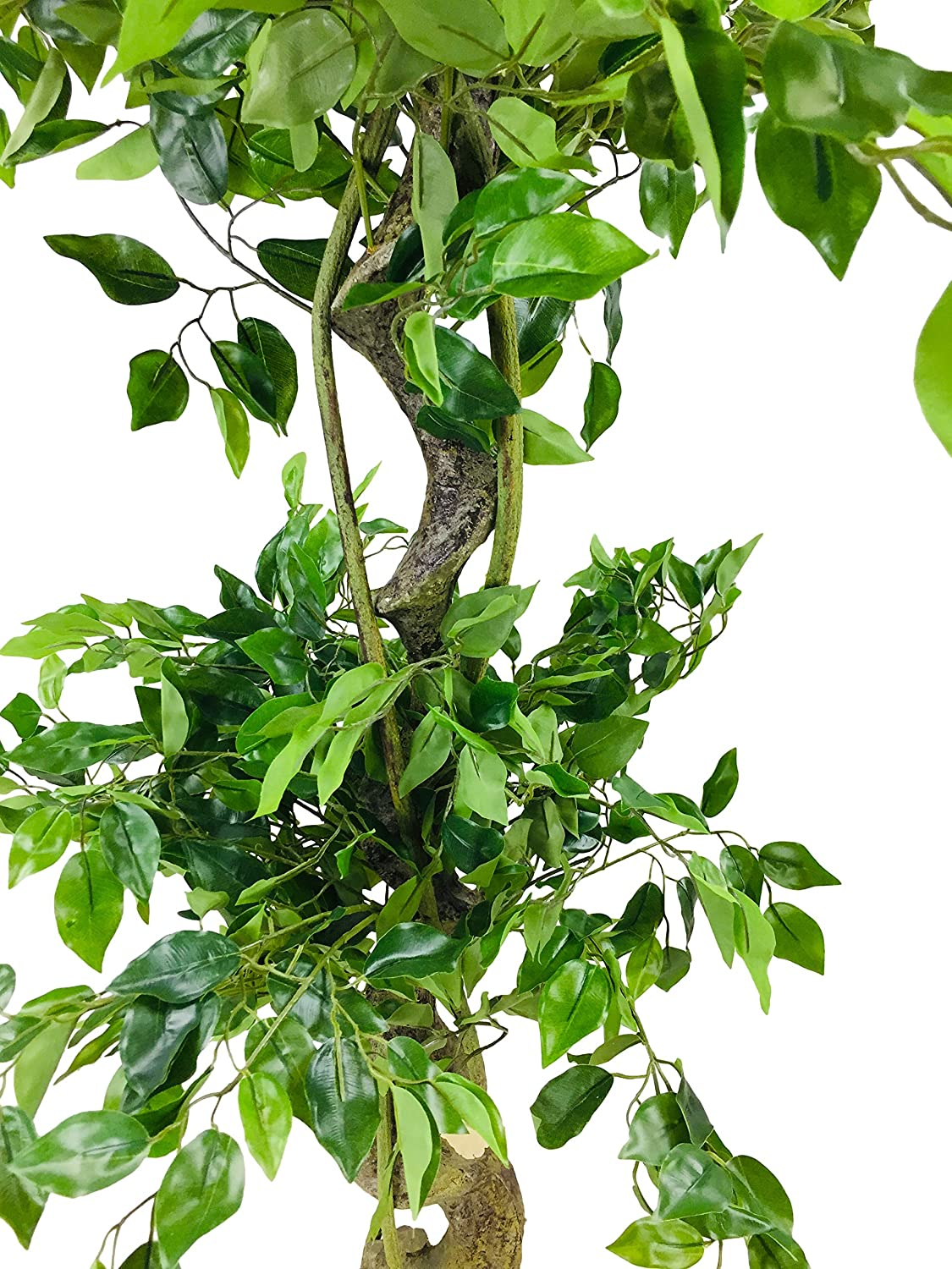 Large Green One Size Geko Artificial Ficus Tree with Twisted Trunk 145cm