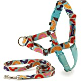 PetSafe Easy Walk Chic Dog Harness, No Pull Dog Harness – Perfect for Leash & Harness Training – Stops Pets from Pulling and