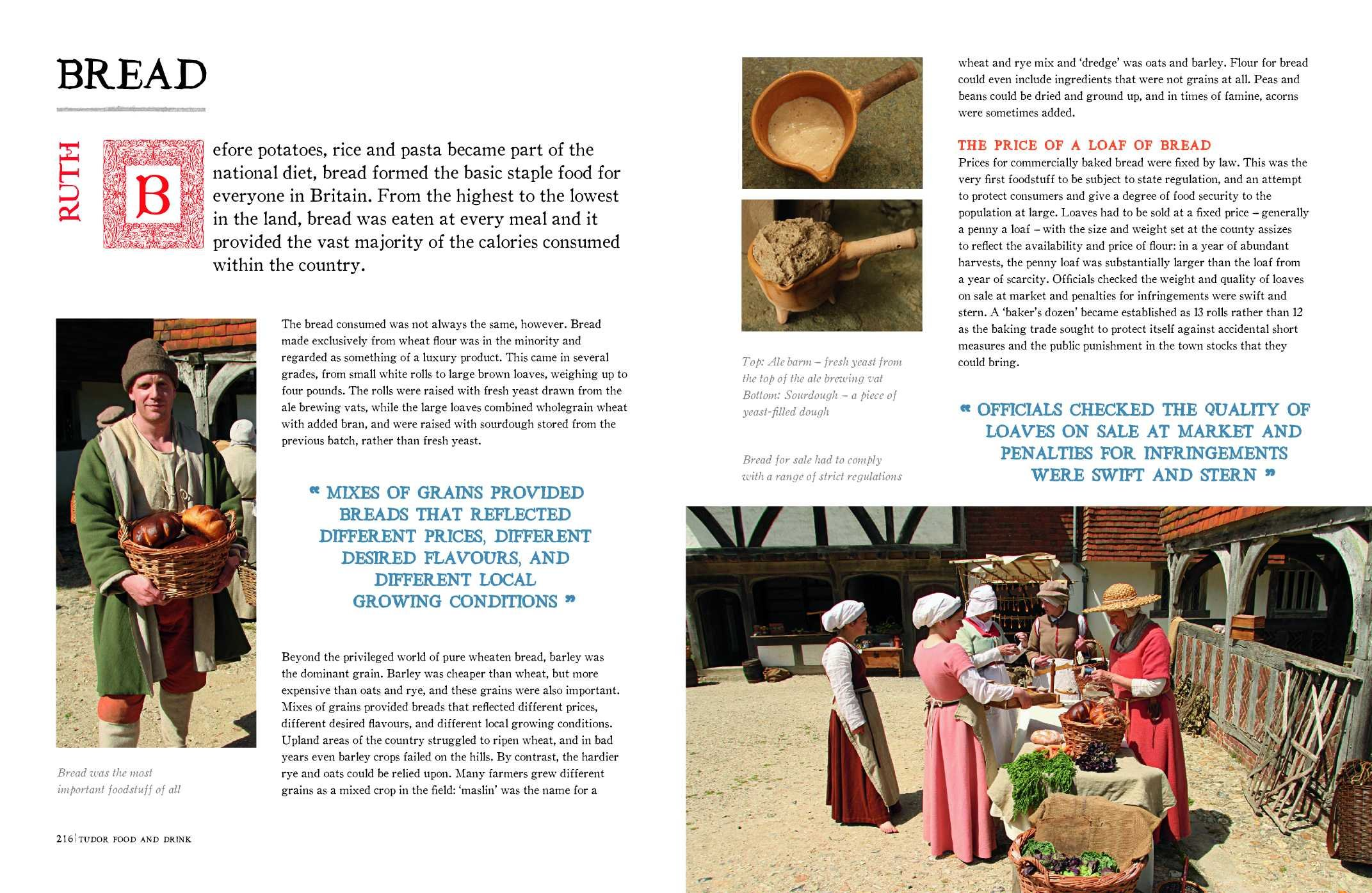 Tudor Monastery Farm: Life In Rural England 500 Years Ago: Peter Ginn, Ruth  Goodman, Tom Pinfold: 9781849906920: Amazon: Books