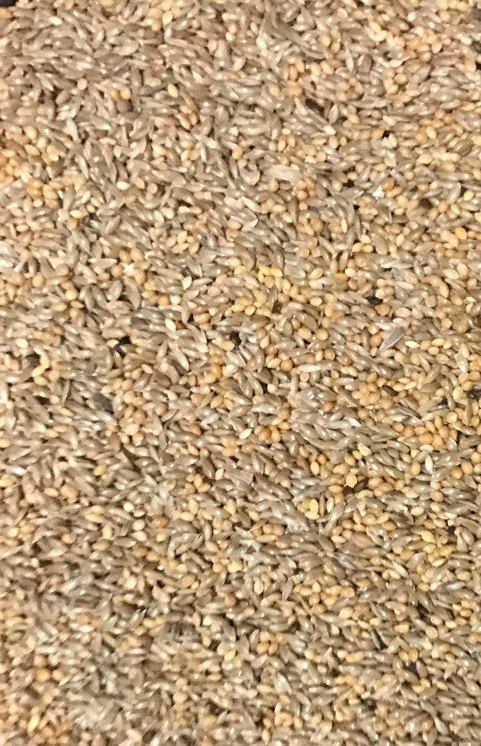 MALTBY'S STORES 10KG 50/50 MIXED BUDGIE SEED MALTBY' S CORN STORES