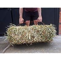 Paca Heno de Avena para Cuyos y Conejos 12 Kilos